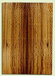 """MYES42659 - Myrtlewood, Solid Body Guitar or Bass Drop Top Set, Med. to Fine Grain, Excellent Color, GreatGuitar Wood, 2 panels each 0.22"""" x 8.125"""" x 23.375"""", S2S"""