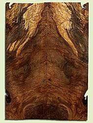"""MAES42748 - Western Big Leaf Maple, Solid Body Guitar Drop Top Set, Med. to Fine Grain Salvaged Old Growth, Excellent Color& Burl, GreatGuitar Wood, Note: Old Insect Damage, 2 panels each 0.27"""" x 8"""" x 22.75"""", S2S"""