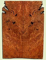 """MAES42750 - Western Big Leaf Maple, Solid Body Guitar or Bass Drop Top Set, Med. to Fine Grain Salvaged Old Growth, Excellent Color& Burl, GreatGuitar Wood, Note: Bark Inclusions and Voids, 2 panels each 0.27"""" x 8"""" x 23"""", S2S"""