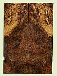 """MAES42753 - Western Big Leaf Maple, Solid Body Guitar or Bass Drop Top Set, Med. to Fine Grain Salvaged Old Growth, Excellent Color& Burl, GreatGuitar Wood, Note:  Bark Inclusions,Checks, Voids, Old Insect Damage, 2 panels each 0.26"""" x 8"""" x 23"""", S2S"""