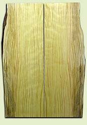 """CDES06897 - Curly Port Orford Cedar Solid Body Guitar Top Set, Good Figure, Salvaged Old Growth, Excellent Tap Tone, Strat or Bass Guitar size.  2 panels each  .18"""" x 7.5>6.5"""" x 22""""  S1S  Rare Guitar Wood"""